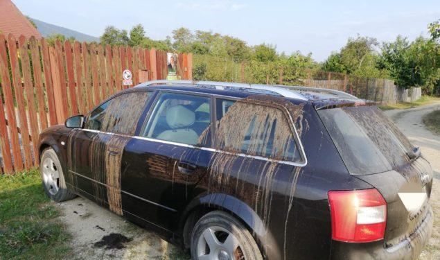 ORLAT: Maşina unui candidat al Partidului Verde vandalizată