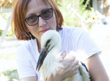Miruna Gritu: Viteza cu care distrugem natura este mult mai mare decât capacitatea ei de regenerare
