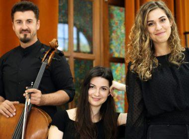 LARSON TRIO în concert offline, la Sibiu